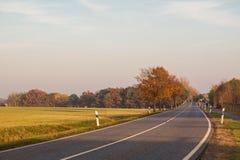 Дорога через поля осени Стоковая Фотография