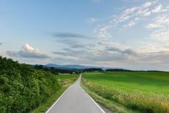 Дорога через поля Стоковые Изображения
