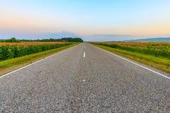 Дорога через поля Стоковое Изображение