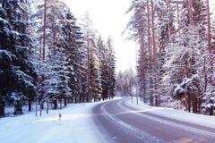 Дорога через снежный лес Стоковое фото RF