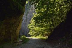 Дорога через ущелье Стоковое фото RF