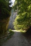 Дорога через ущелье Стоковое Изображение