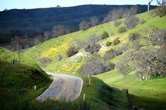 Дорога через холмы Стоковое Изображение RF