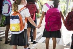 Дорога школы скрещивания студентов детского сада идя Стоковые Фото