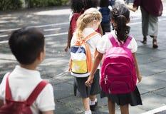 Дорога школы скрещивания студентов идя Стоковые Фотографии RF