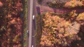 Дорога шоссе вида с воздуха в ландшафте осени лес вдоль обочин акции видеоматериалы