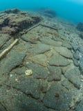 Дорога Herculanea подводный, археология стоковая фотография