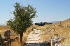 дорога necropolis к стоковая фотография
