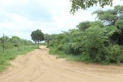 Дорога Sandy в африканском Bushveld Стоковое Изображение RF