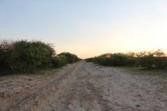 Дорога Sandy в африканском Bushveld Стоковые Фото