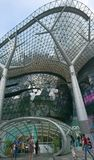 Дорога Singapour Orchad Стоковые Изображения