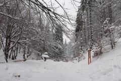 Дорога Snowy от водопада стоковая фотография