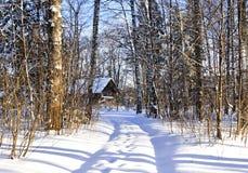 Дорога Snowy, сельская местность, холодный день, холодные русские зимы холодна, деревья, снег Стоковая Фотография