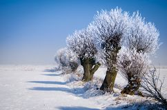 Дорога Snowy с трассировками стоковое изображение