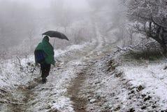 Дорога Snowy Стоковое Изображение