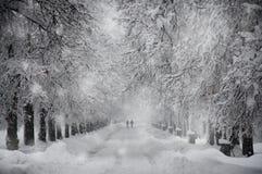 Дорога Snowy Стоковое фото RF