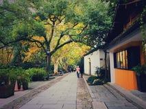 Дорога yin Ling в Ханчжоу стоковые фотографии rf