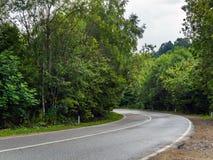 Дороги асфальта поворачивают налево Стоковая Фотография RF