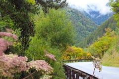 Дороги в горах Стоковая Фотография