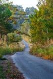 Дороги в лесе, ландшафт, природа клыка ` Doi Солнця Juh ` Таиланда, Чиангмая Стоковая Фотография