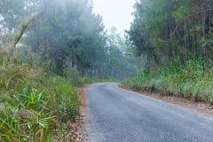Дороги в лесе, ландшафт, природа клыка ` Doi Солнця Juh ` Таиланда, Чиангмая Стоковая Фотография RF