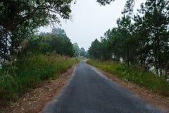 Дороги в лесе, ландшафт, природа клыка ` Doi Солнця Juh ` Таиланда, Чиангмая Стоковое Изображение
