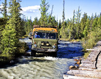 Дороги гор Altai Стоковое фото RF
