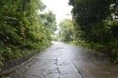 Дороги защищенные мимо зеленой матушка-природой Стоковое фото RF