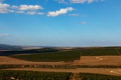 Дороги к nowere - ландшафту Addo Стоковая Фотография
