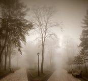 дороги Стоковая Фотография RF