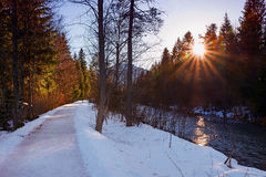 Дорожка берега реки в зиме стоковые изображения