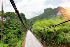 Дорожка висячего моста к джунглям Стоковые Фото