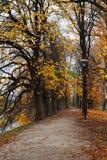 Дорожка водя в парк осени в Таллине, Эстонии Стоковое Изображение RF