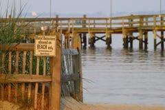 Дорожка водя к пляжу Стоковое фото RF