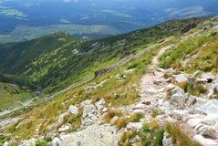 Дорожка в горе Стоковое Фото
