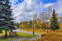 Дорожка в парке города осени с пестротканой листвой деревьев стоковая фотография