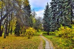 Дорожка в парке города осени с пестротканой листвой деревьев стоковое изображение