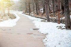 Дорожка в парке с снегом стоковое изображение