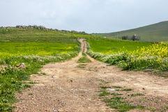 Дорожка красно-кирпича водит до дома в Марокко Стоковое Изображение