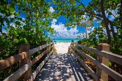 Дорожка к известному южному пляжу, Miami Beach, Флориде Стоковая Фотография