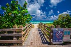 Дорожка к известному южному пляжу, Miami Beach, Флориде Стоковое фото RF