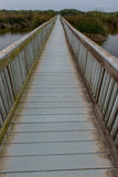 Дорожка моста океаном над озером стоковое изображение rf