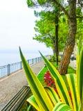 Дорожка на береге, озере Garda, Италии, Европе Стоковая Фотография RF