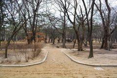 Дорожка на дворце area3 Changgyeong Стоковое фото RF