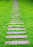 Дорожка на лужайке Стоковые Изображения