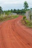 Дорожка обматывая свой путь через спокойный сад Стоковая Фотография RF