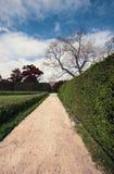 Дорожка парка осени Стоковые Фото