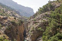 Дорожка скалы в узком ущелье Стоковые Фотографии RF