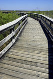 дорожка США тропки положения национального парка florida болотистых низменностей anhinga деревянная Стоковое Изображение RF