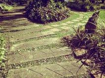 Дорожка цемента и зеленая трава Стоковые Изображения RF